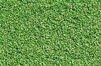 60820 Auhagen - Streumaterial, Wiese hellgrün, 70 g