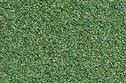 60821 Auhagen - Streumaterial, Wiese dunkelgrün, 70 g