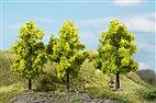70937 Auhagen - 3 Laubbäume hellgrün, 11 cm