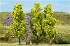 70939 Auhagen - 3 Laubbäume hellgrün, 15 cm