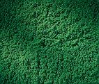 76670 Auhagen - Rollrasen dunkelgrün 15 x 25 cm