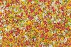 76937 Auhagen - Schaumflocken Frühlingsblumen, 150ml