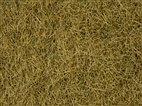 Noch 07101 - Wildgras beige, 6 mm, 50 g