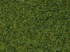 Noch 07102 - Wildgras hellgrün, 6 mm, 50 g