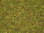 """Noch 08330 - Streugras """"Blumenwiese"""" 2,5 mm, 20 g"""