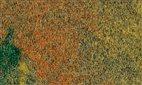 75116 Auhagen - 1 Sommerwiesenmatte, 50 x 35 cm